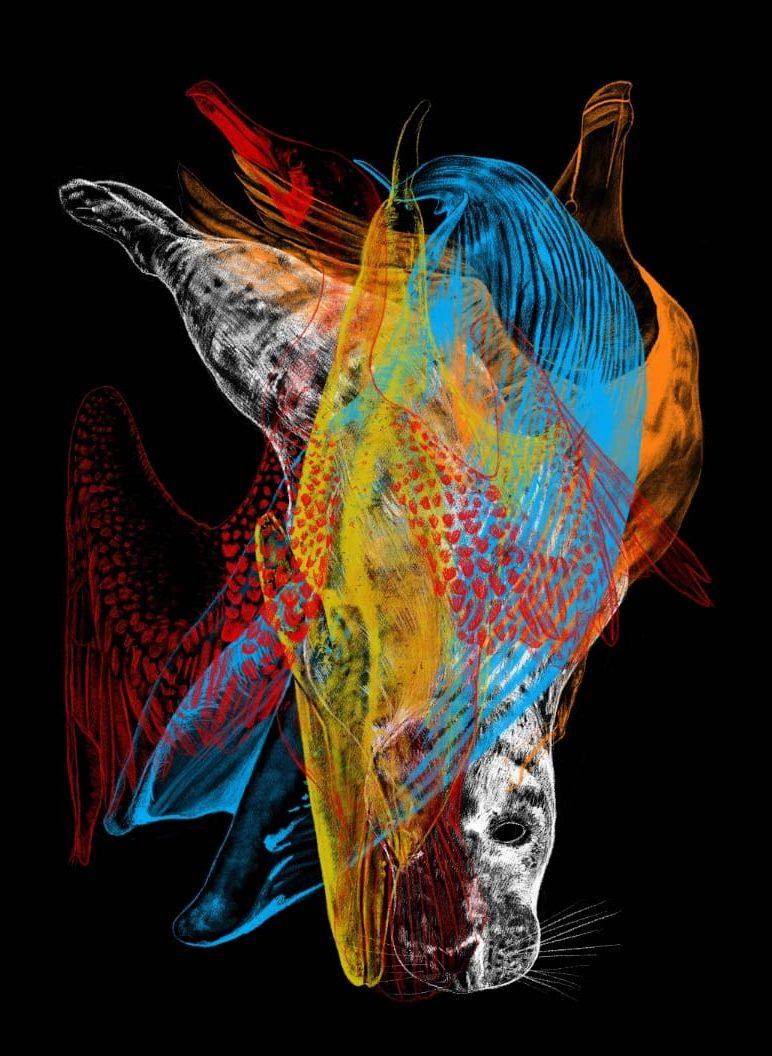 DRIFT ARTIST: John Flynn